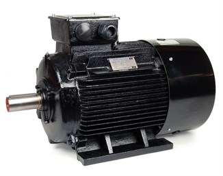 Teco AC Motor 22kW 1500rpm IE3 B3 Cast Iron  D180L