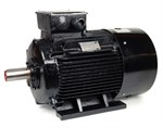 Teco AC Motor 45kW 1500rpm IE3 B3 Cast Iron  D225M
