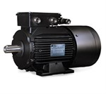 LSMV Inverter Rated Motors