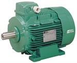 LSES High Efficiency Imfinity Motor